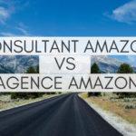 Consultant Amazon vs Agence Amazon